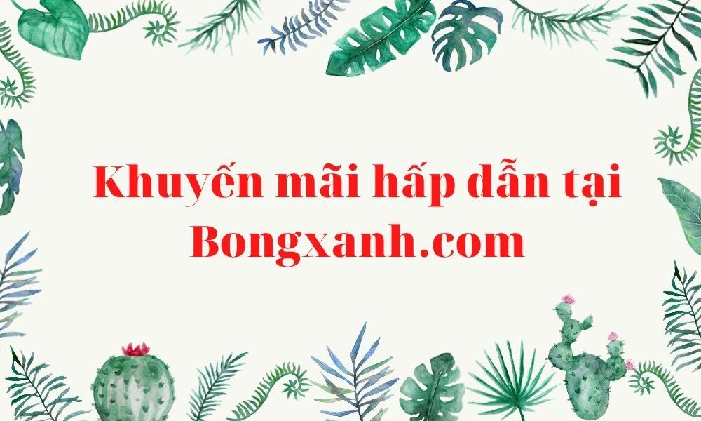 Chương trình khuyến mãi hấp dẫn tại Bongxanh.com